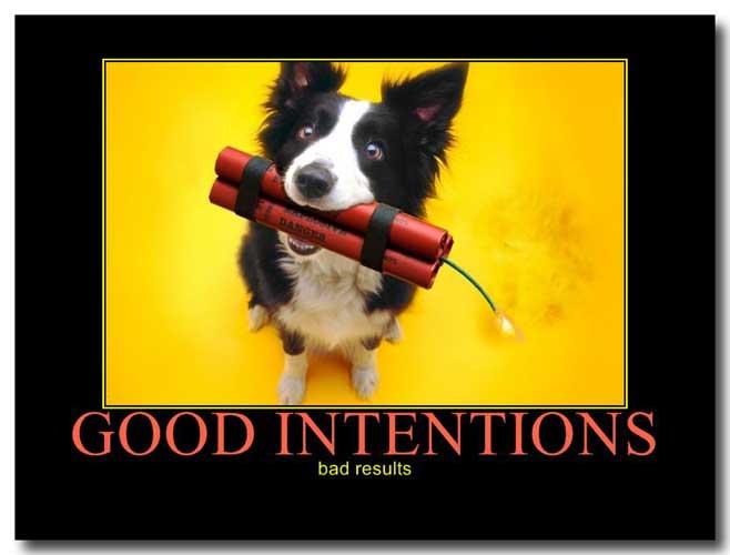 GoodIntentionsBadResultsW1